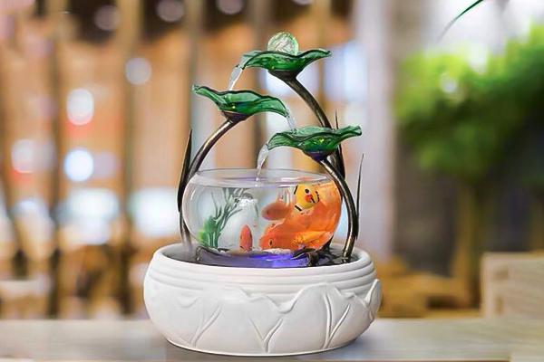 bể cá mini tặng bạn trai
