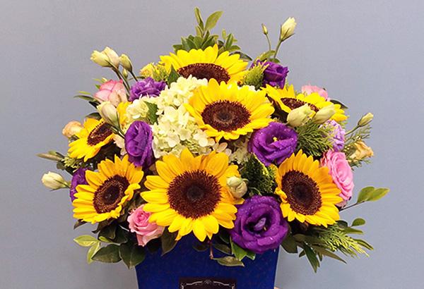 ý nghĩa của hoa hướng dương trong công việc