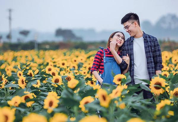 ý nghĩa của hoa hướng dương trong tình yêu