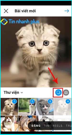 cách khắc phục lỗi không đăng được nhiều bức ảnh trên instagram
