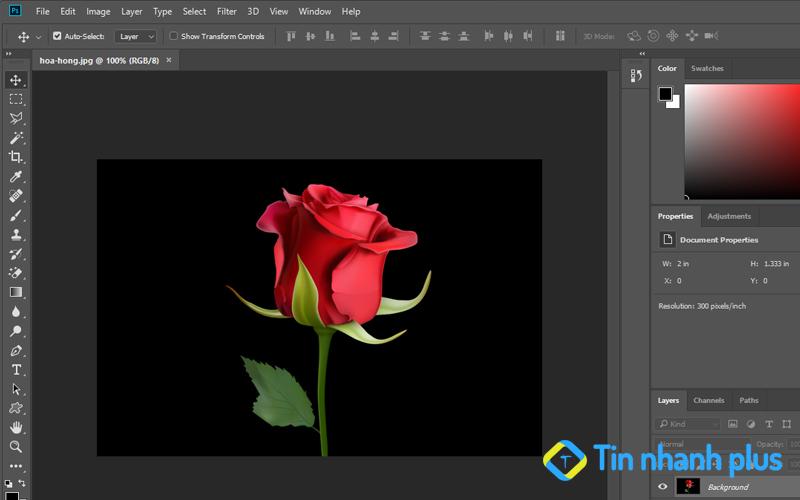 tách nền đen trong photoshop bằng Magic Wand Tool