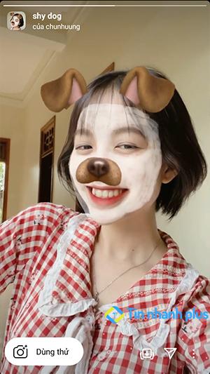 hiệu ứng instagram Shy dog